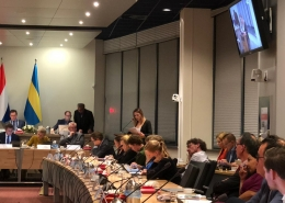 Romy de Man tijdens de algemene beschouwingen 2018 - Onafhankelijk Rijswijk